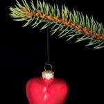 One red christmas ball on green tir. — Stock Photo