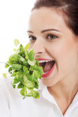 Young business woman eating lettuce. — Stock Photo