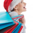 Beautiful woman in santa hat with shopping bags. — Stock Photo