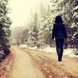 Woman is walking through forest in wintertime — Stock Photo #40199169