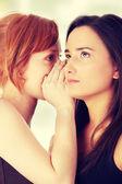 Women talking gossip — Stock Photo