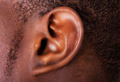 Black male ear  — Stock Photo