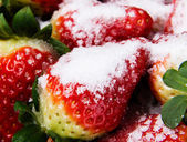 Close up on fresh red strawberries. — Stock Photo