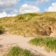 Stock Photo: Dunes at north sea