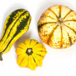 Ornamental or decorative gourd — Stock Photo