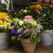 Stock Photo: Flower-Shop