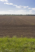 Unworked fields — Stockfoto