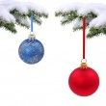 Вечнозеленая ель Рождественская — Стоковое фото