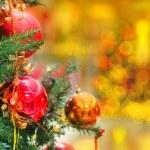 Christmas tree — Stock Photo #14019883
