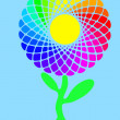 Rainbow sunflower — Stock Photo