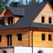 Wooden cottage — Stock Photo #26533377