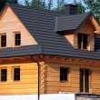 Wooden cottage — Stock Photo #26533411