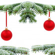 Christmas evergreen tree with red glass bal — Foto de Stock