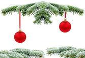 árbol de hoja perenne navidad con rojo cristal bal — Foto de Stock