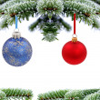 Christmas evergreen spruce tree with glass bal — Stock Photo