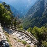 Samaria Gorge — Stock Photo #14283913