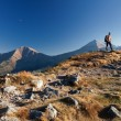Hiker in Tatras Mountains — Stock Photo #18634573