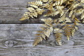 Christmas decorations - gouden twig — Stockfoto