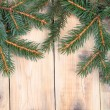 Christmas fir tree — Stock Photo #13639268