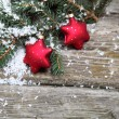 Red Christmas decorations — Stock Photo #13954409