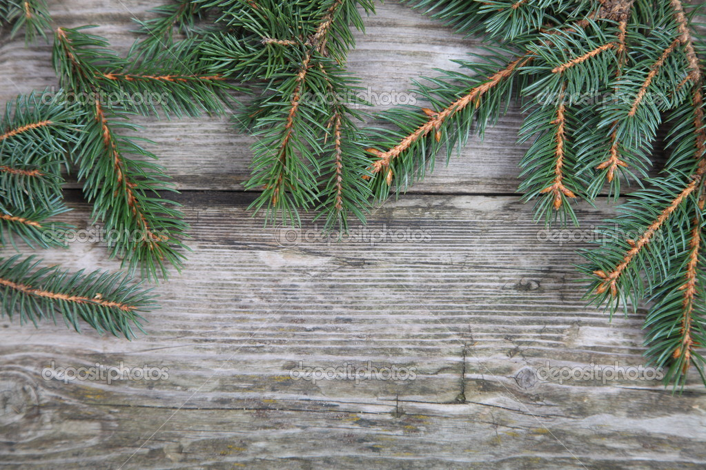 Christmas fir tree on the wooden board  — Stock Photo #14101348