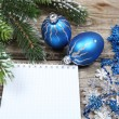 Christmas still life — Stock Photo #17126969