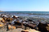 Orilla del mar. — Foto de Stock