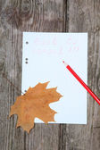 Checkered sheet, maple leaf and pencil — Stock Photo