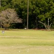 Stock Photo: Driving Range