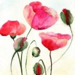 Stylized Poppy flowers illustration — Stock Photo #13753107