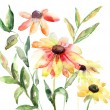 Watercolor illustration with beautiful flowers — Stock Photo #13753143
