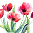 Tulips flowers — Stock Photo #13753150