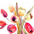 Tulips flowers, Watercolor painting - Stock Photo