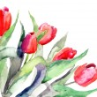 Stylized Tulips flowers illustration — Stock Photo #13753158