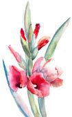 Belles fleurs, aquarelle — Photo