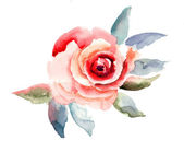 Rose flowers illustration — Stock Photo