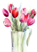 Flores lindas tulipas, aguarelas — Foto Stock