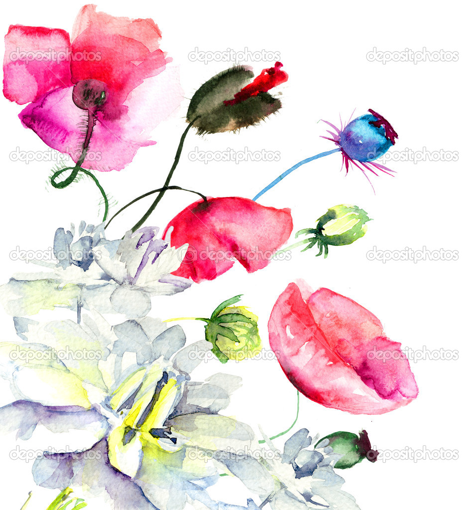 Watercolor illustration with beautiful flowers   Stock Photo #13753079