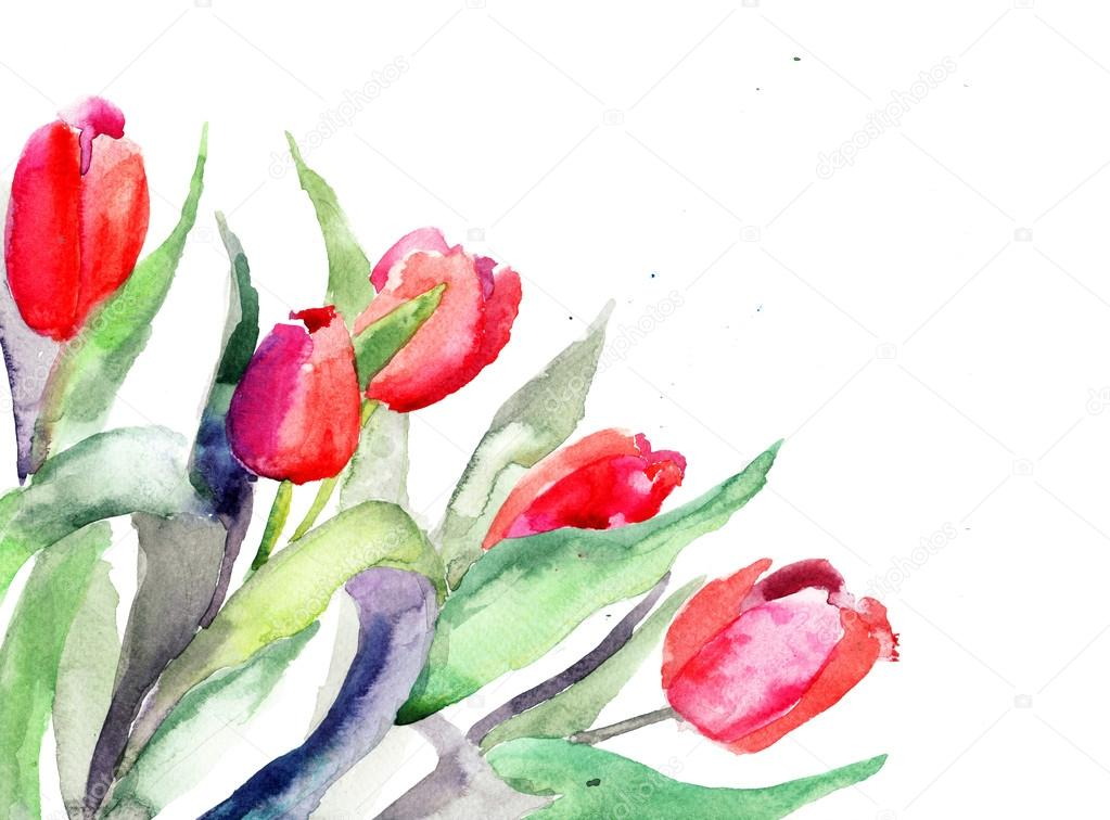Red Tulips flowers — Stock Photo #13753148