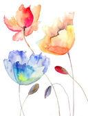 Beautiful summer flowers, watercolor illustration — Stock Photo