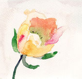 Watercolor illustration with beautiful flower — Stock Photo