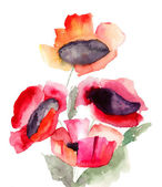 Beautiful red flowers — Stockfoto