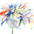 Watercolor illustration with beautiful flowers - Foto Stock