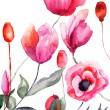 Colorful flowers, watercolor illustration — 图库照片