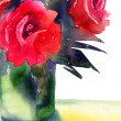 Roses flowers — Stock Photo