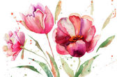 Three Tulips flowers — Stock Photo