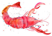 Watercolor illustration of lobster — Stock Photo