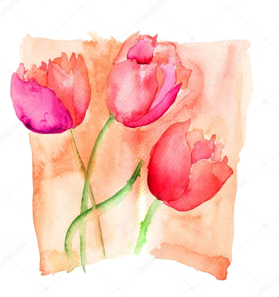 Colorful illustration of red tulips flowers  — Stock Photo #15637911