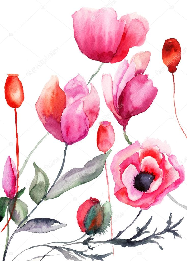 Colorful flowers, watercolor illustration   Stock Photo #15637941