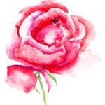 Stylized rose flower — Stock Photo
